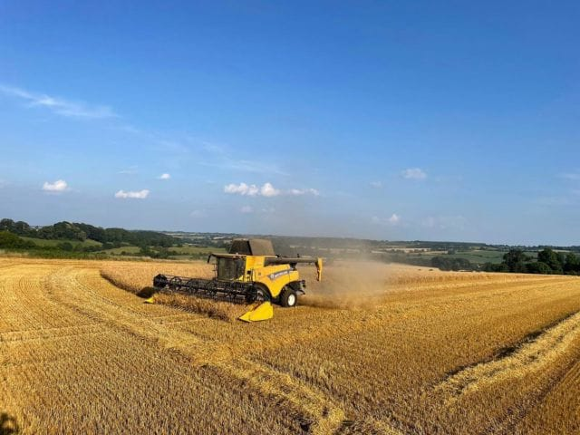 Harvest 2021 is well underway. The grain is brought back to the farm and tested in our grain laboratory. The winter barley straw will be baled and sold for animal bedding.   #harvest2021 #farming #barley #harvest #combine #greattew