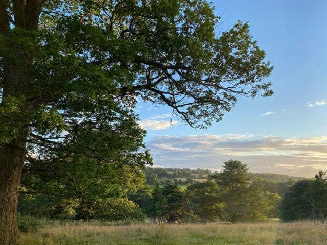 View from Cow Hill this evening   #summerevenings #view #greattew #nature #countryside