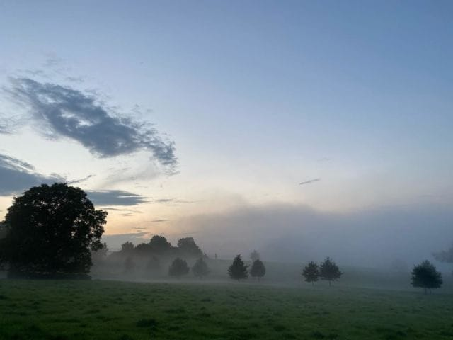 Misty sunset this evening  #sunset #misty #silhouette #evening #greattew