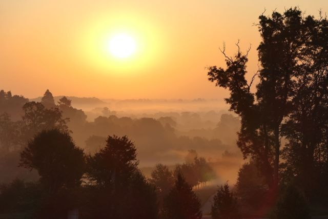 Feeling very Autumnal this morning 🍂   📸 @manonfosb #autumn #morning #misty #sunrise #view #greattew